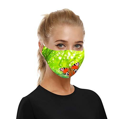SHUANGA Männer und Frauen Anti-Verschmutzung Anti-Spritzer Erwachsenen Gesichtsschutz Wiederverwendbare Anti-Fog Anti Staub Atemschutz