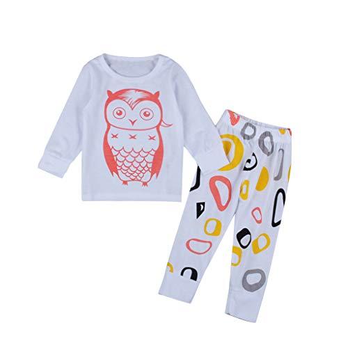 HDUFGJ Babykleidung Satz Baby Mädchen Jungen Niedlich Eule Druck Lange Ärmel T-Shirt Tops + Hosen Ausstattungs Kleidung Satz 90(Weiß)