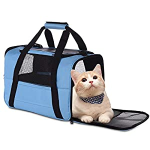 NAT Dog Carrier Cat Carrier Pet Carrier, Airline Approved Dog Carrier with Mesh Window, Breathable, Collapsible, Soft-Sided, Escape Proof, Easy Storage, Best for Small Medium Cats Dogs, Blue