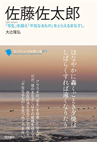 佐藤佐太郎 (コレクション日本歌人選)