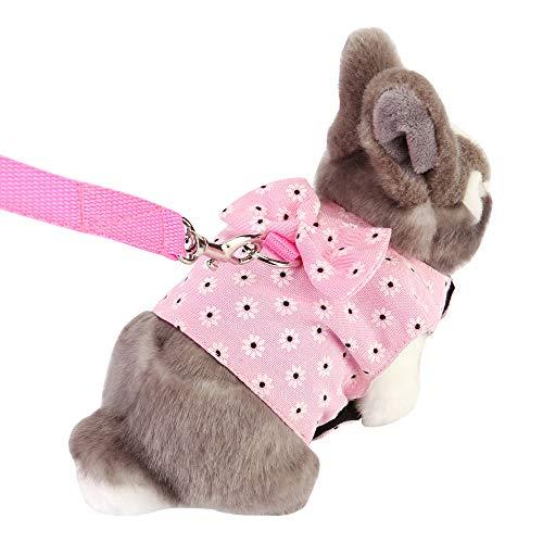Filhome Kaninchen Geschirr mit Leine Hasen Verstellbares Weiches Kleintiergeschirr Softgeschirr für Walking Laufen Training