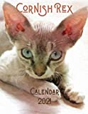 Cornish Rex 2021 Calendar: 12 Month Calendar with Daily Weekly Monthly Planner - Cute Cornish Rex Kitten Pastel Art Drawing Cover