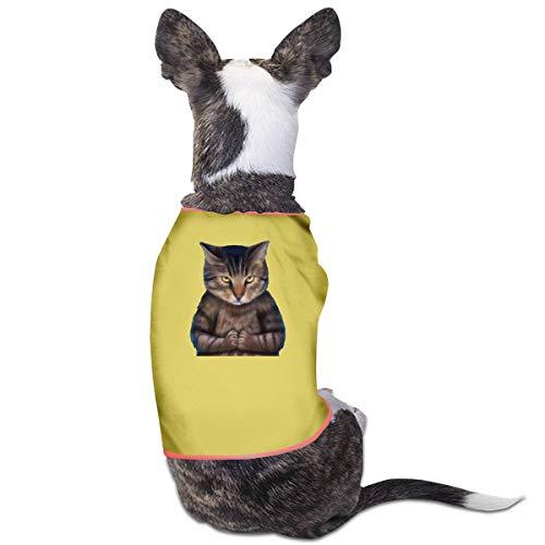 Jiaojiaozhe Zen Cat HiQ Avatar Huisdier Service Huisdier Kleding Grappige Hond Kat Kostuum Tshirt Geel, M, Geel