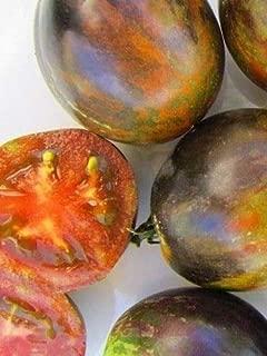 Organic Cosmic Eclipse Tomato 100 Seeds