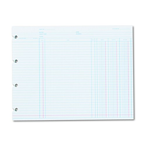Wilson Jones N2D Accounting, 9-1/4 x 11-7/8 (Pack of 100 Loose Shoots)