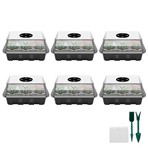 78Henstridge 6 Stücke Zimmergewächshaus Anzucht Gewächshaus Anzuchtschale Mini Anzuchtkasten mit Deckel und Belüftung für Sämling Pflanze Aufzucht (6 Stücke)