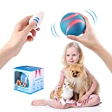USB Rechargeable Smart Interactive Pet Toy Bounce Ball for Dog Cat,Built-in 1000mAh Battery,RGB Flashing LED Lights,360 Degree Auto Rolling/Turn off,Washable Durable TPU Roller Wicked Toys (Blue)