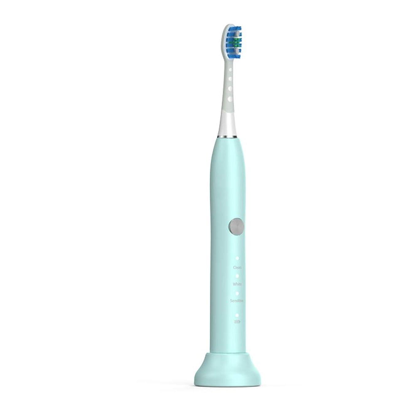 学ぶ憎しみ立場電動歯ブラシ 毎日の使用のためのUSBの充満基盤のホールダーの柔らかい毛の保護きれいな歯ブラシが付いている電動歯ブラシ 大人と子供向け (色 : 緑, サイズ : Free size)