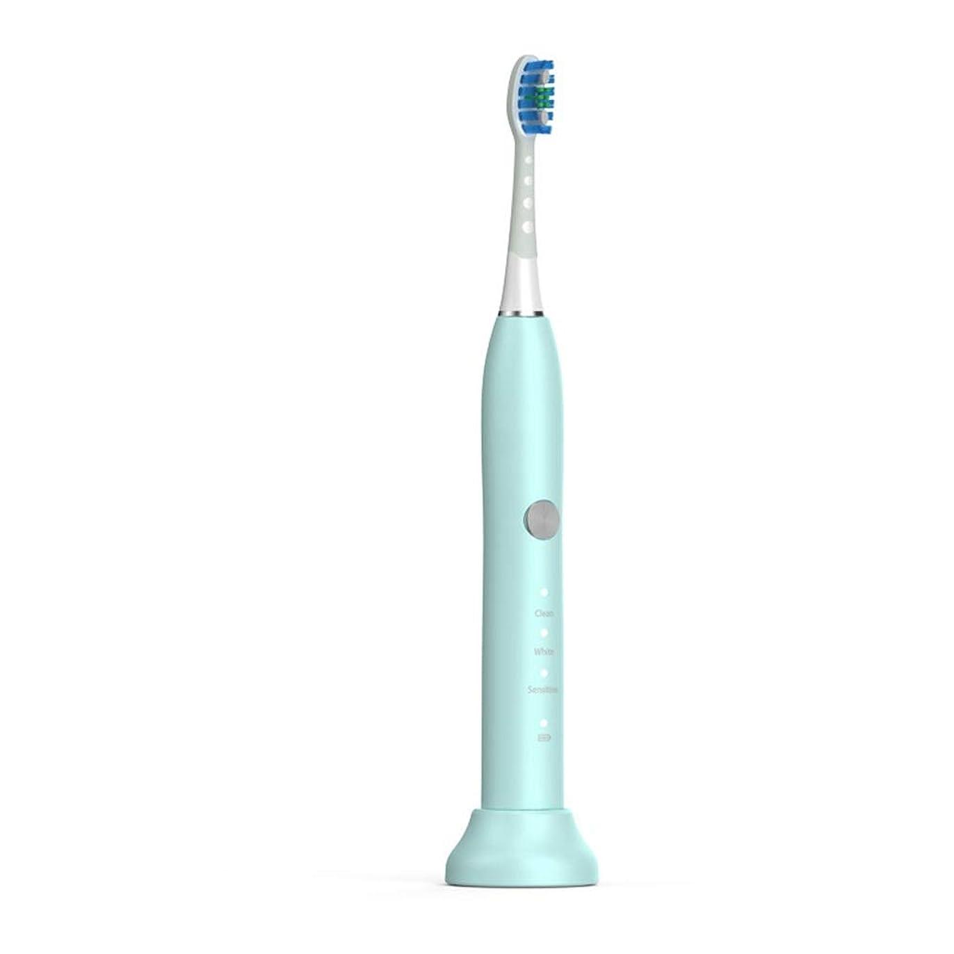 自発道徳教育前進電動歯ブラシ 毎日の使用のためのUSBの充満基盤のホールダーの柔らかい毛の保護きれいな歯ブラシが付いている電動歯ブラシ 大人と子供向け (色 : 緑, サイズ : Free size)