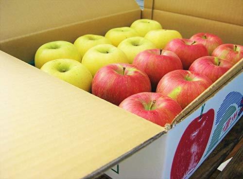 生産農家直送 信州の旬のりんご 訳あり お勧め詰め合わせ 自家用向き 約9〜10kg入り/箱 サンつがる さんさ シナノリップ 秋映 シナノスイートなど旬のリンゴを詰め合わせますせ、