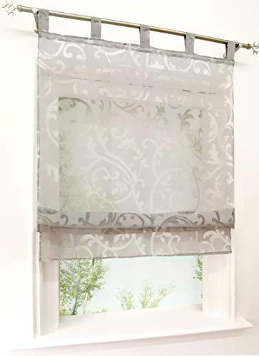 BAILEY JO Voile Raffrollo mit Schlaufen Rollos Ausbrenner Pteris Gardinen Transparent Vorhang (BxH 120x140cm, grau)