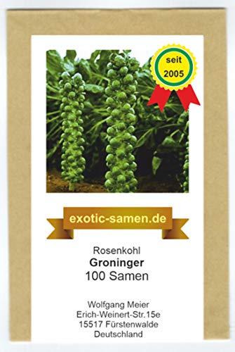 Rosenkohl - Groninger - 100 Samen