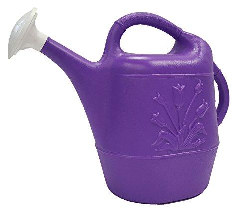 Union 63071 Tulip Plastic Watering Can, 2 gallon, Purple