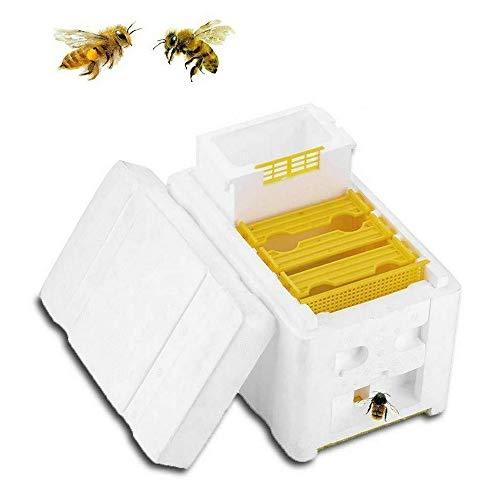 vbva Oogst Bijenkorf, Veehouderij & Bijenteelt Huizen, EPS bestuiving Doos Mini Oogst Bijen Hive Bijenteelt Koning Doos 9.45 x 5.83 x 6.50 inch