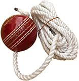SUNLEY Hanging Leather Practice Cricket Ball with Rope (1)