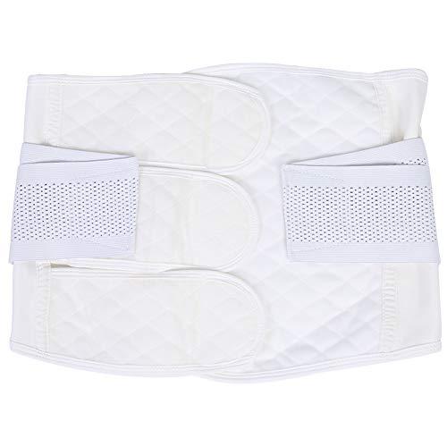Cinturón para después del embarazo, cinturón de posparto para el vientre de las mujeres Cinturón de posparto transpirable para el vientre Bandas de adelgazamiento de la cintura(L)