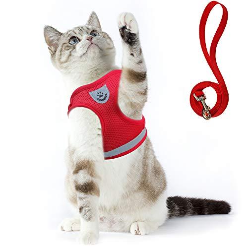 Supet Katzengeschirr Geschirr für Katzen Ausbruchsicher Welpengeschirr Weich Kaninchengarnitur Katzen Weste mit Leine für Kitten Hunde Chihuahua