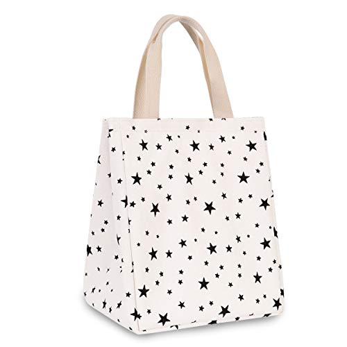 HOMESPON Lunchtasche Mittagessen Tasche wiederverwendbar Lunchbag mit wasserdichter isolierter Aluminiumfolie, Lebensmitteltransport für Kinder und Studenten