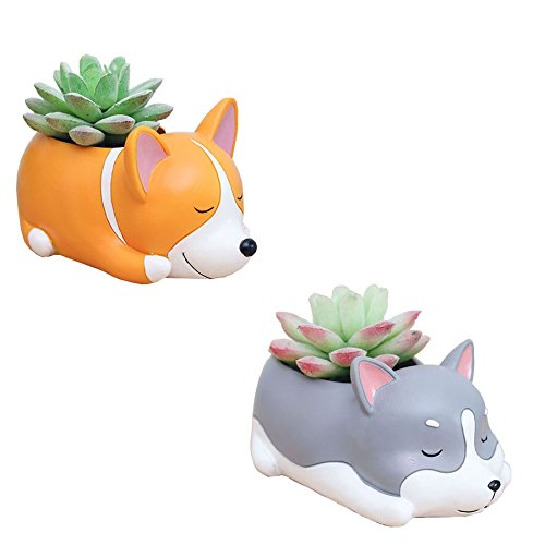 2 PCS Set Cute Cartoon Animal Shaped Succulent Cactus Flower Pot/Plant Pots/Planter/Container for Home Garden Office Desktop Decoration