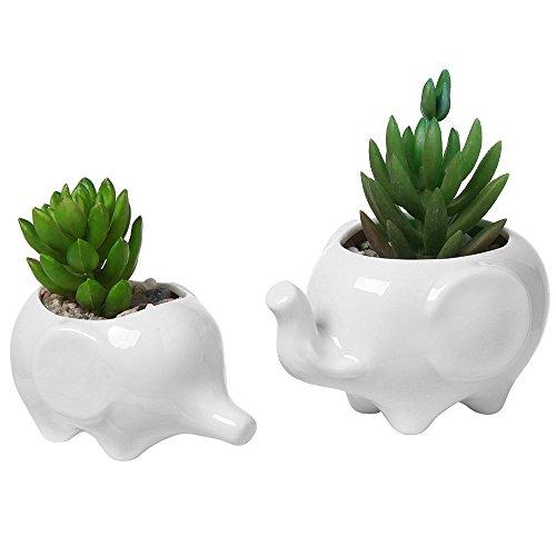 Nrpfell Set von 2 suesser Elefant weisse Keramik Blumentopf mit Tablett fuer Sukkulenten Kaktus Pflanzen Mini Topf Planter Haus Garten Dekoration