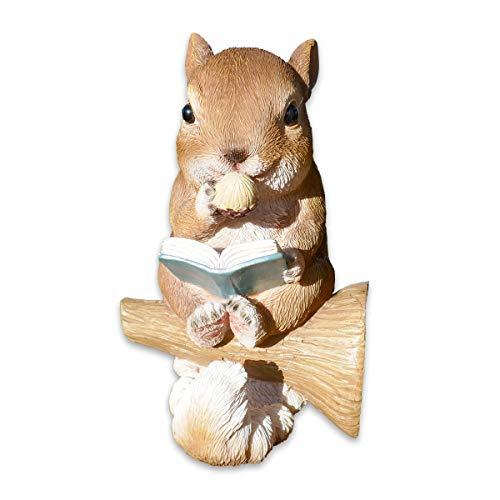 SHACAMO Baumtiere mit Solarlicht Bär oder Eichhörnchen mit Buch (Eichhörnchen braun)