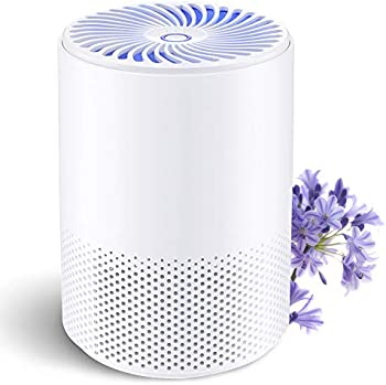 Boyon 3-in-1 H13 True HEPA Filter Desktop Air Cleaner