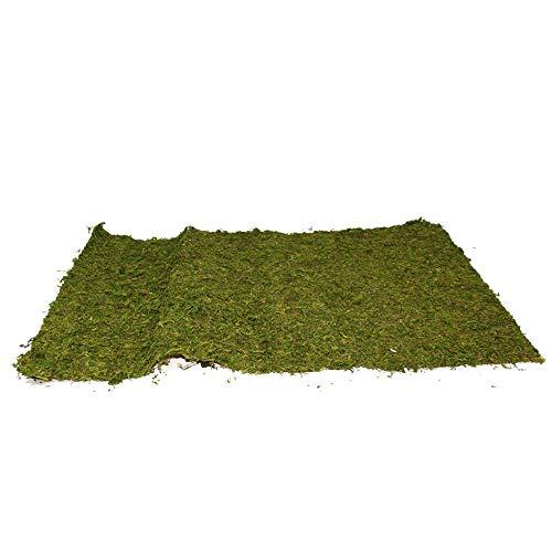 Aurora Store.it 3 pz Tappeto Muschio Prato Verde per presepe Fondale Sintetico per Decorazione Scenario Paesaggio Carta Presepe Rotolo da 50x70cm