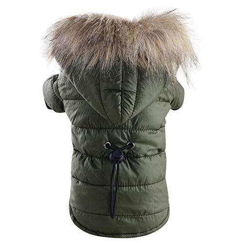 Manteau d'hiver Chaud Veste Rembourré Vêtements Capuche Vêtements d'hiver Lavable en Coton pour Chiot Petit Chien (Vert Armée, S)