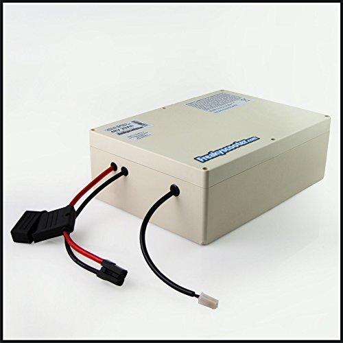 FREAKYSCOOTER Batería de litio Samsung 35E de 48 V y 35 Ah, 1680 Wh con funda, incluye cargador de 2 A