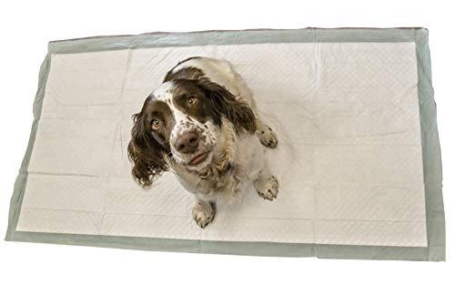 SpeedwellStar Trainingsunterlagen für Welpen Puppy WC Welpentoilett 20 Extra Groß 150 x 80 cm ohne duft hygieneunterlagen für haustiere absorbiert matte