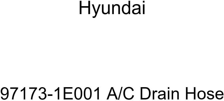 Genuine Hyundai 97173-1E001 A Hose C Sale price High quality new Drain