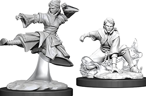 WizKids D&D Nolzurs Marvelous Upainted Miniatures: Wave 11: Female Human Monk