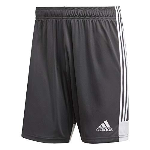 adidas Herren TASTIGO19 Shorts, dgh solid grey/White, M