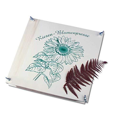 Wiemann Lehrmittel Große Blumenpresse / Pflanzenpresse 30 x 30 cm