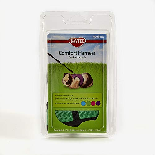 Kaytee Comfort Harness & Stretchy Leash, Medium