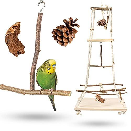 Atemberaubender Vogelspielplatz hängend mit vielen Sitzstangen ! Tolles Vogelspielzeug für Wellensittich, Nymphensittich & Co.