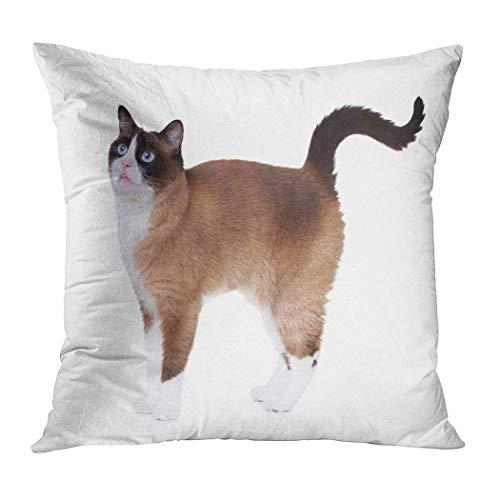 Jopath Bonita funda de almohada, diseño de gato de raquetas de nieve, con diseño de gato emocionado, funda de cojín de impresión suave, decoración de 50 x 50 cm