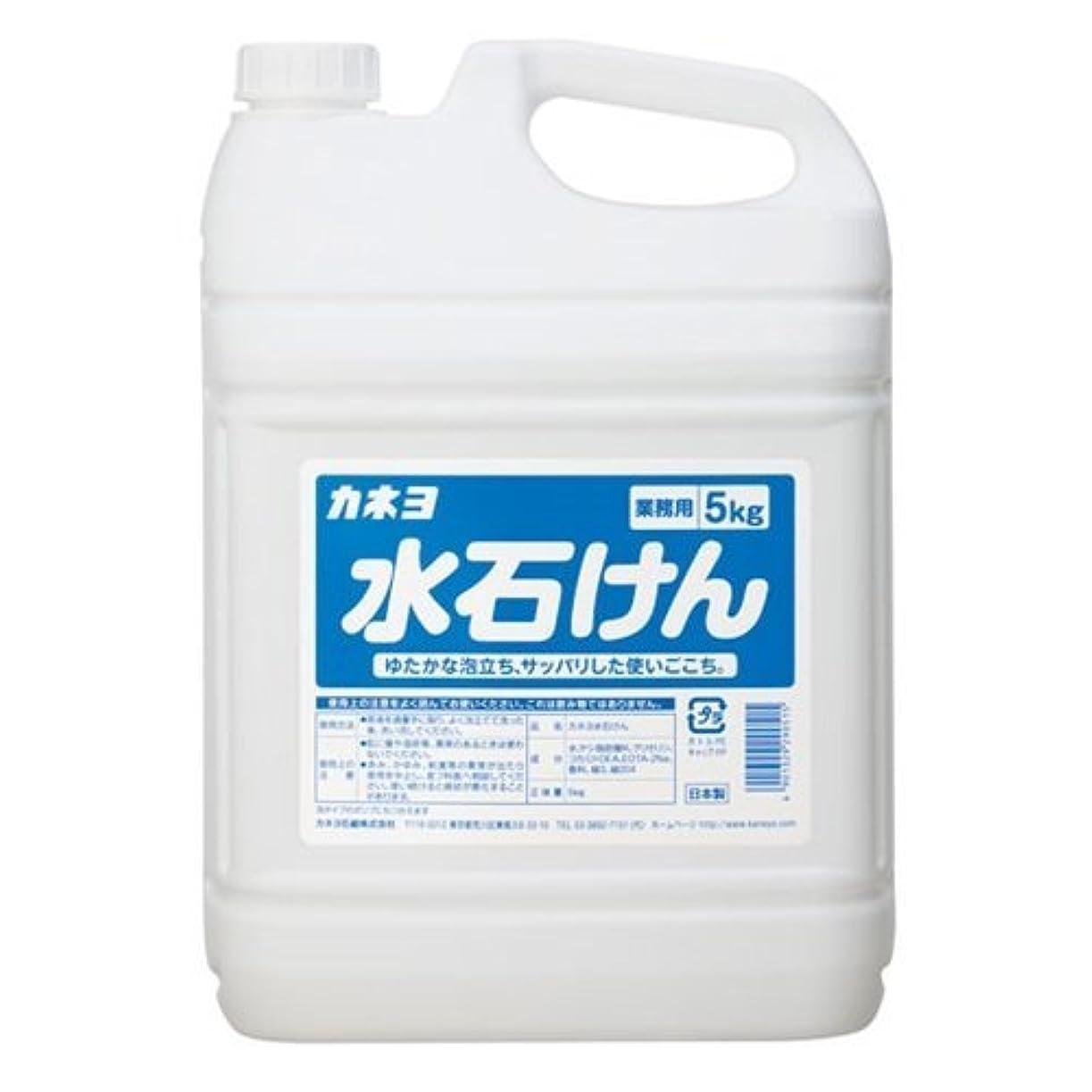 怒り抗議バター【ケース販売】業務用 カネヨ水石けん 5㎏×3本