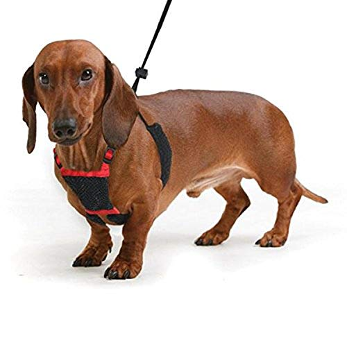 SPORN No-Pull Dog Harness, Mesh, Red, Medium