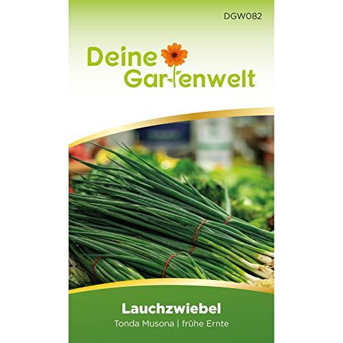 Lauchzwiebeln Tonda musona Samen | Frühlingszwiebel | Winterheckenzwiebeln Saatgut | Lauchzwiebelsamen | Allium cepa