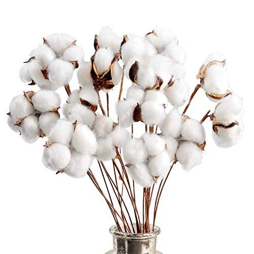 Cotton Stems Farmhouse Decorations (20 Pack) Cotton Decor Floral Stems &...