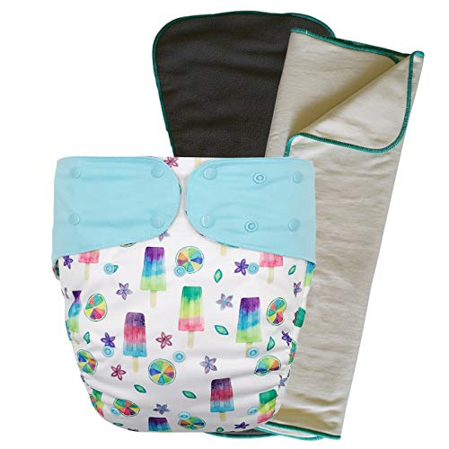 Cloth Diaper Cover Set - Reusable Special Needs Incontinence Briefs with Bamboo Inserts for Big Kids, Teens and Adults (Popsicle, Regular)