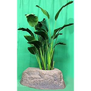 Silk Flower Arrangements Artificial 5' Two Bush Tropical Silk Bird of Paradise Palm Tree with Lg Rock Planter Cover, by Silk Tree Warehouse