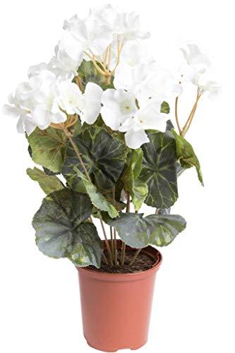 Flora-Seta künstliche Geranie (Geranienbusch) mit 7 Stielen und 3 kleinen und 4 größeren Blütenköpfen im Kunststofftopf (Creme-weiß)
