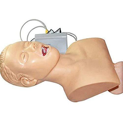 Maniquí de intubación nasal oral, modelo de enseñanza Modelo electrónico de intubación traqueal humana, con alarma de presión dental para entrenador de gestión de vías respiratorias de laboratorio