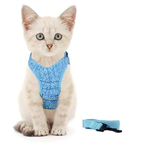 Generic Brands Katzengeschirr mit Leine Ultraleichtes Kitten Collar Coft und bequemes Brustgeschirr für Kätzchen und Kaninchen (M, Blau)