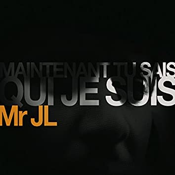 Maintenant Tu Sais Qui Je Suis (feat. Rocé)