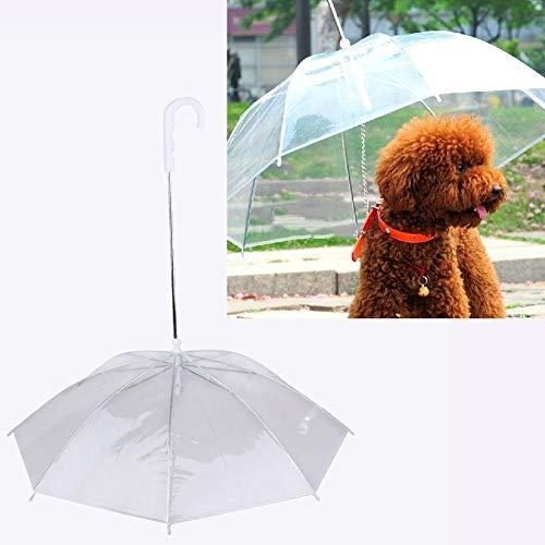Möbel Liefert Neuer transparenter Haustier-Hundewelpen-trockener bequemer regnender schneiender Gebrauch Regenkleidung (Color : Clear, Size : M)