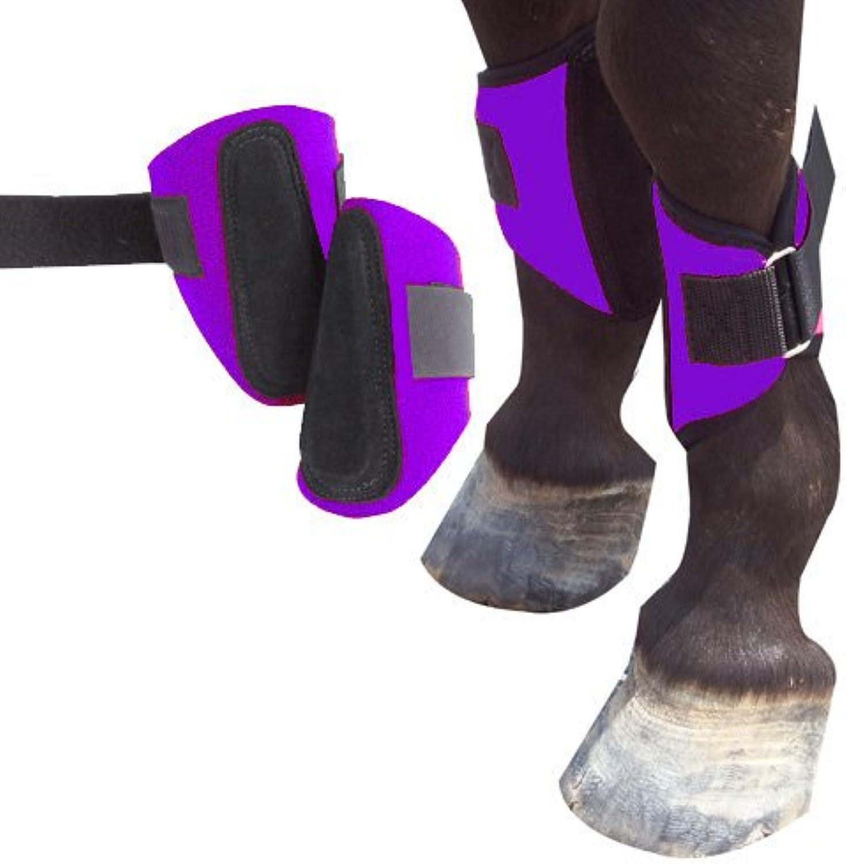 Intrepid International 245835PR Mini Horse Splint Boot, Purple