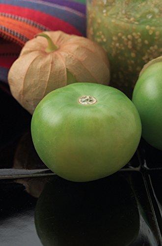 Burpee Gigante Tomatillo Seeds 160 seeds